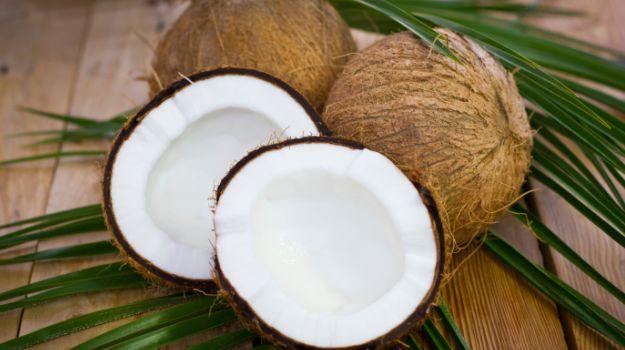 625-coconut_625x350_61429771509